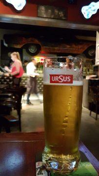 Ursus, Cluj, Romania
