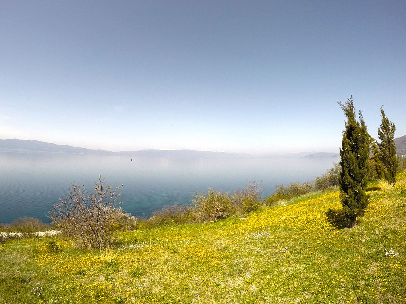 Ohrid lake view