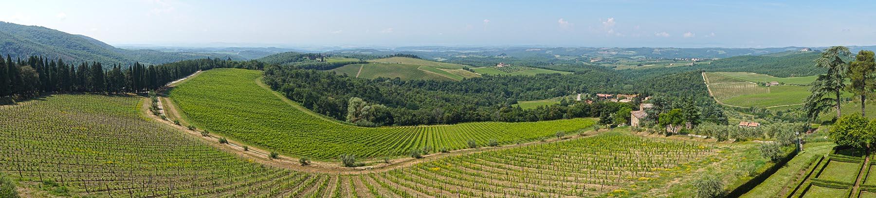 Tuscany landscape at Barone Ricasoli winery