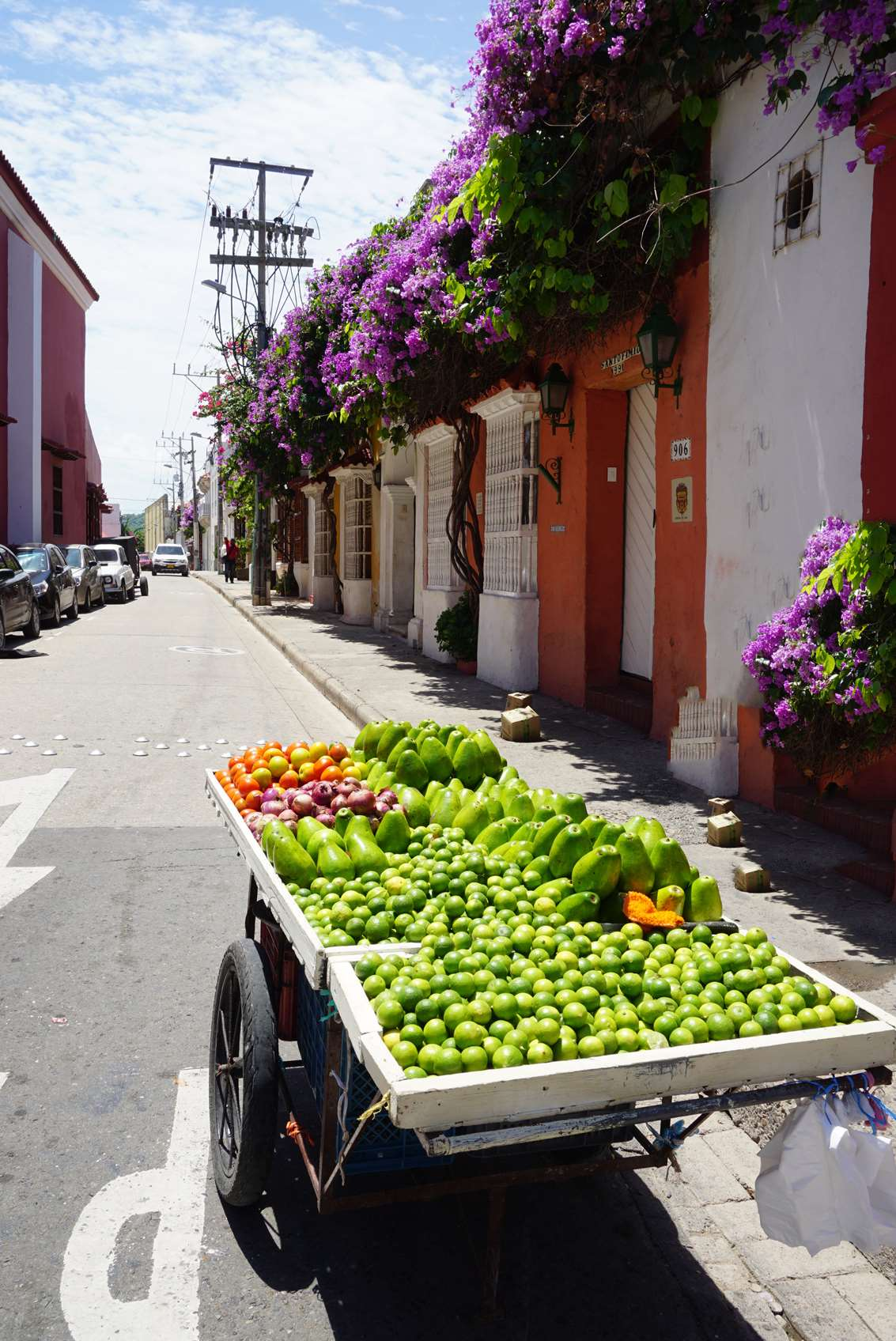 selling-huge-tasty-avocados-on-the-street-in-cartagena