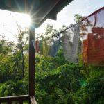 Sunshine on the terrace