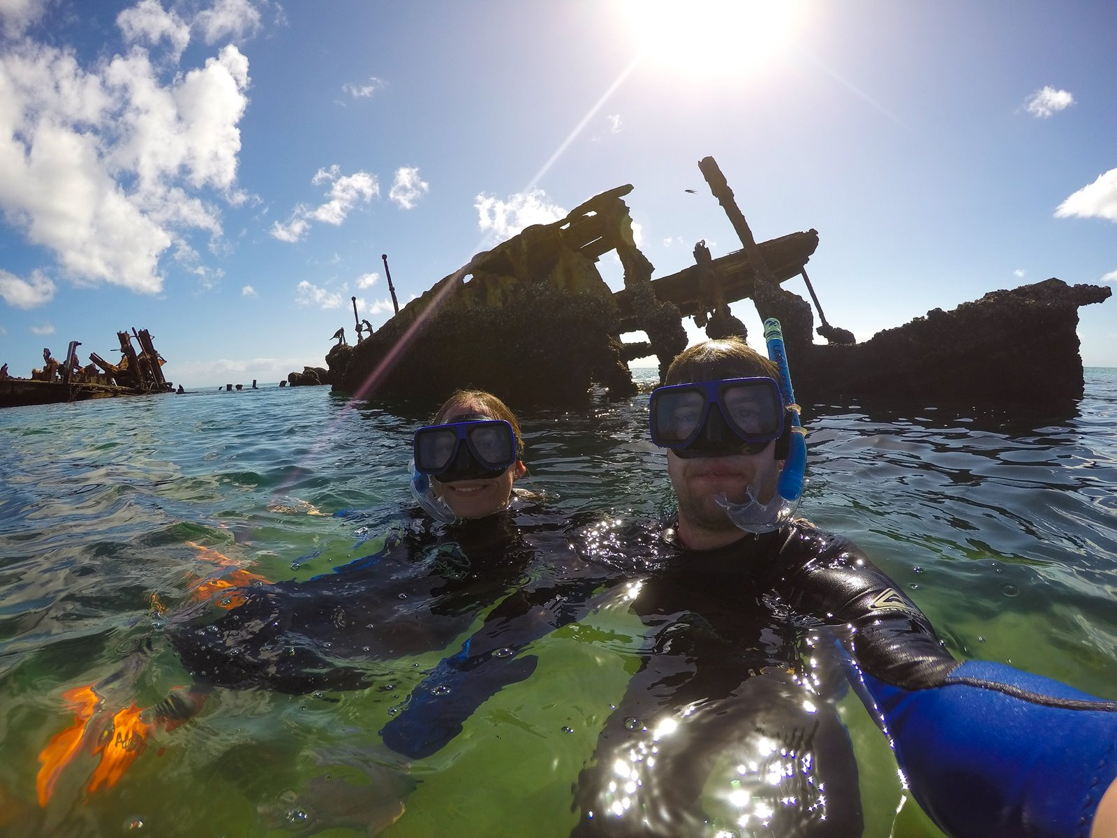 snorkeling the sunken ship wrecks in Tangalooma Island