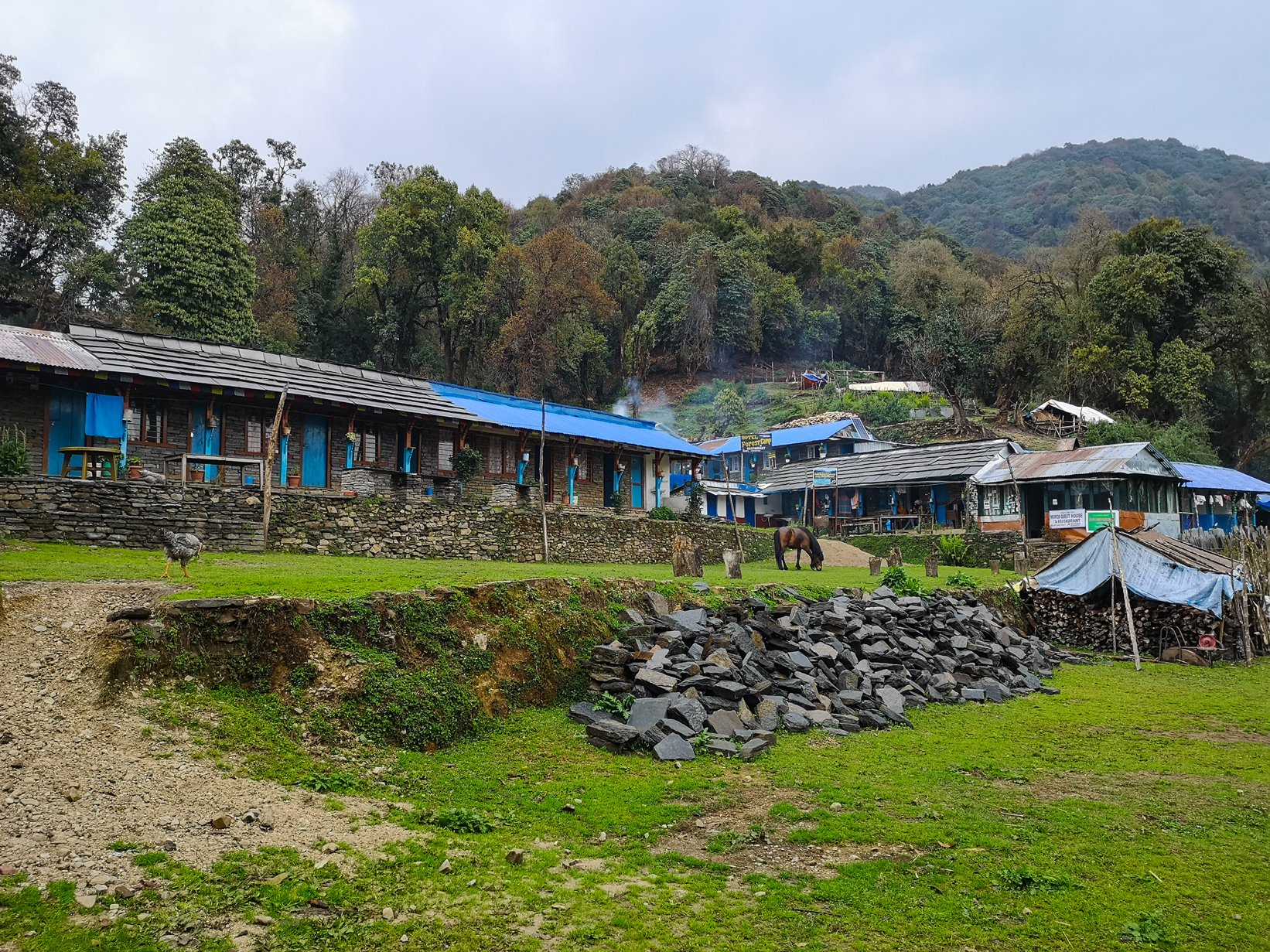 Forest camp, Mardi Himal base camp in Nepal