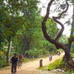 Siem Reap back roads