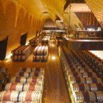 Antinori winery barrels